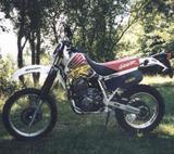 Honda XR 600 R 1995