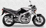 Suzuki GS 500 E 1991