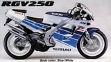 Suzuki RGV 250 M 1991