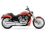 Harley-Davidson VRSCB V-Rod 2005