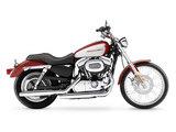 Harley-Davidson XL 1200 C Sportster Custom 2005