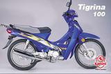 Kanuni Tigrina 100 2005