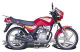 Qianjiang QJ100-2B 2005