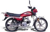 Qianjiang QJ100-3A 2005