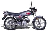 Qianjiang QJ100-3D 2005