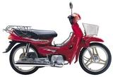 Qianjiang QJ100-4 2005