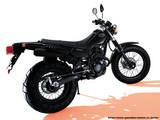 Yamaha TW 200 2005