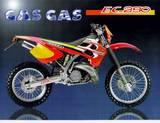 Gas-Gas EC 250 2001